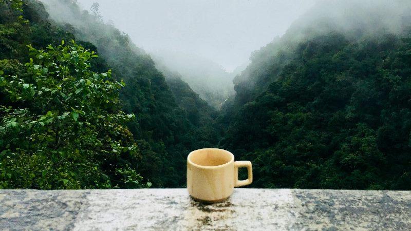 Uwarunkowania geograficzne - kawa z Meksyku